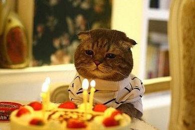 생일촛불.jpg